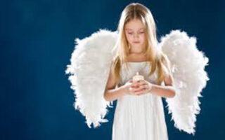 aripile copiilor sunt pentru zbor nu pentru a le fi taiate