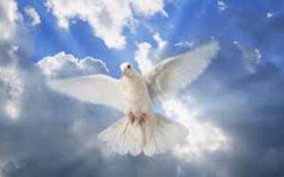 lectiile spiritului