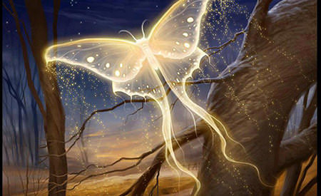 spiritele naturii si fiintele elementale