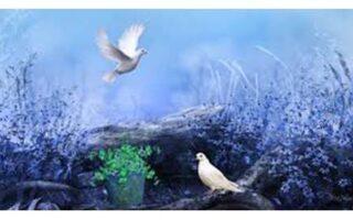importanta curajului in evolutia noastra spirituala