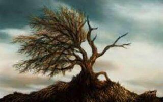 dincolo de dualitate