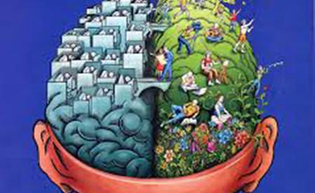 cele 4 niveluri de constienta si cele 4 creiere