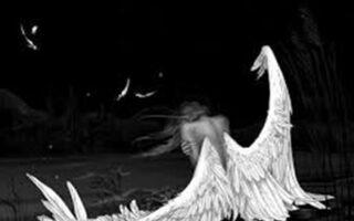 trauma si scindarea sufletului
