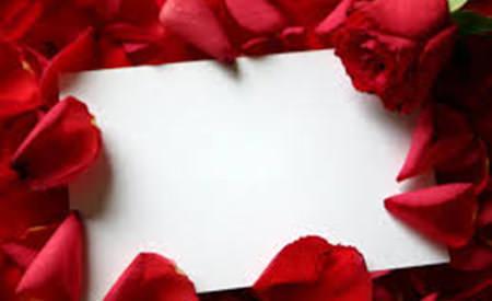 scrisori de dragoste catre straini