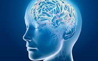 7 modalitati de a avea o memorie mai buna