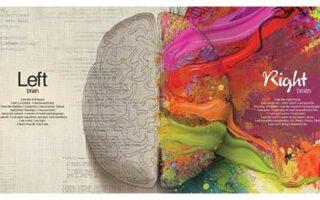 4 exercitii simple pentru a ne antrena emisfera dreapta a creierului