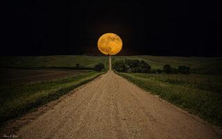 luna noua in berbec